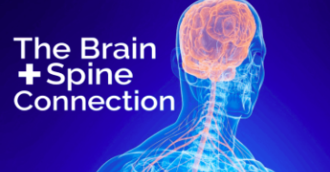 The Brain + Spine Connection image