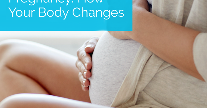 Pregnancy: How Your Body Changes image